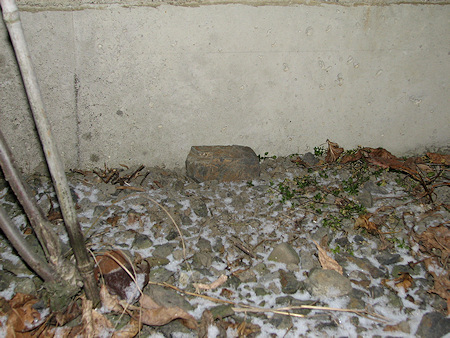 雪をかぶるオオカマキリの墓