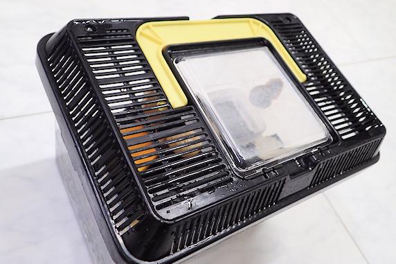 カタツムリ飼育〜ラップで乾燥対策