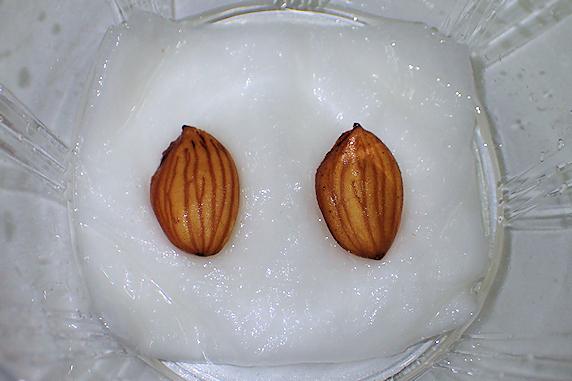 7度目の挑戦、桃の種蒔き