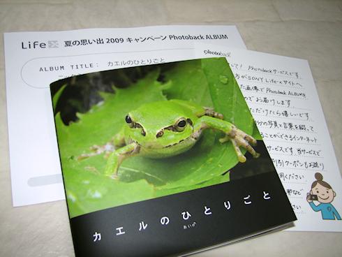 「カエルのひとりごと」の本が完成