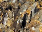 霜柱と苔と氷