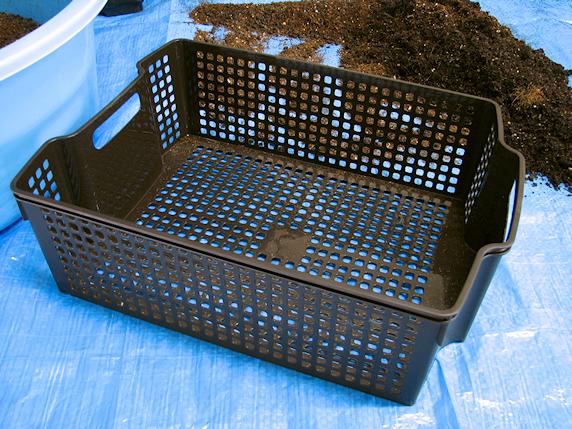 エダマメ収穫後のプランターを再生中