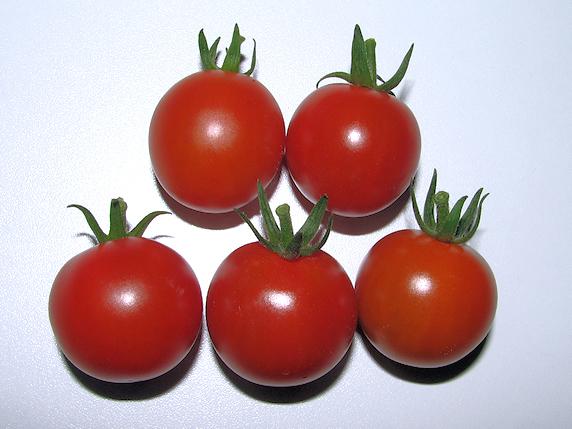 ミニトマト5個収穫