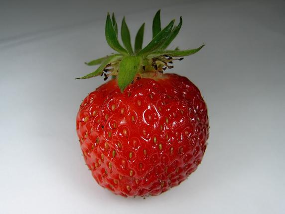 救済イチゴの真っ赤な実