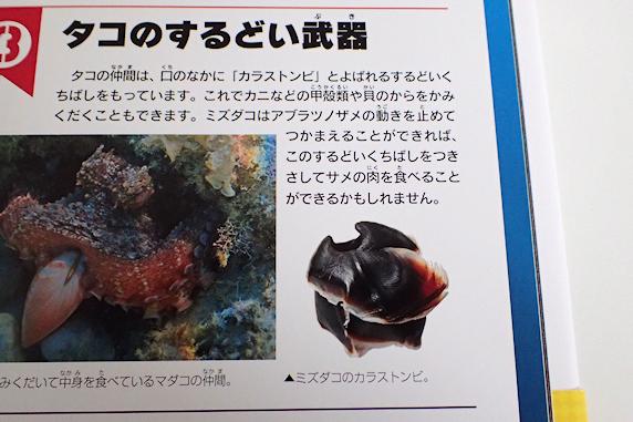 タコのくちばしの画像が図鑑に使用されました