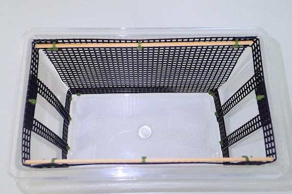 カマキリ飼育ケースのネットを改造