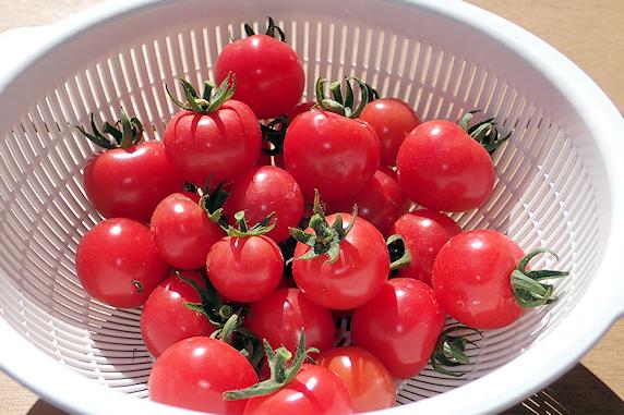 スナップエンドウとミニトマト