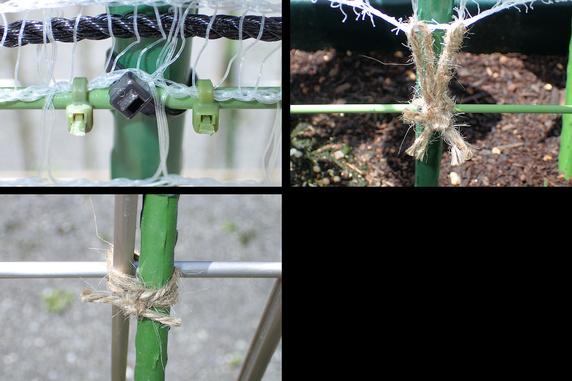 インゲンとエンドウの支柱とネットを構築